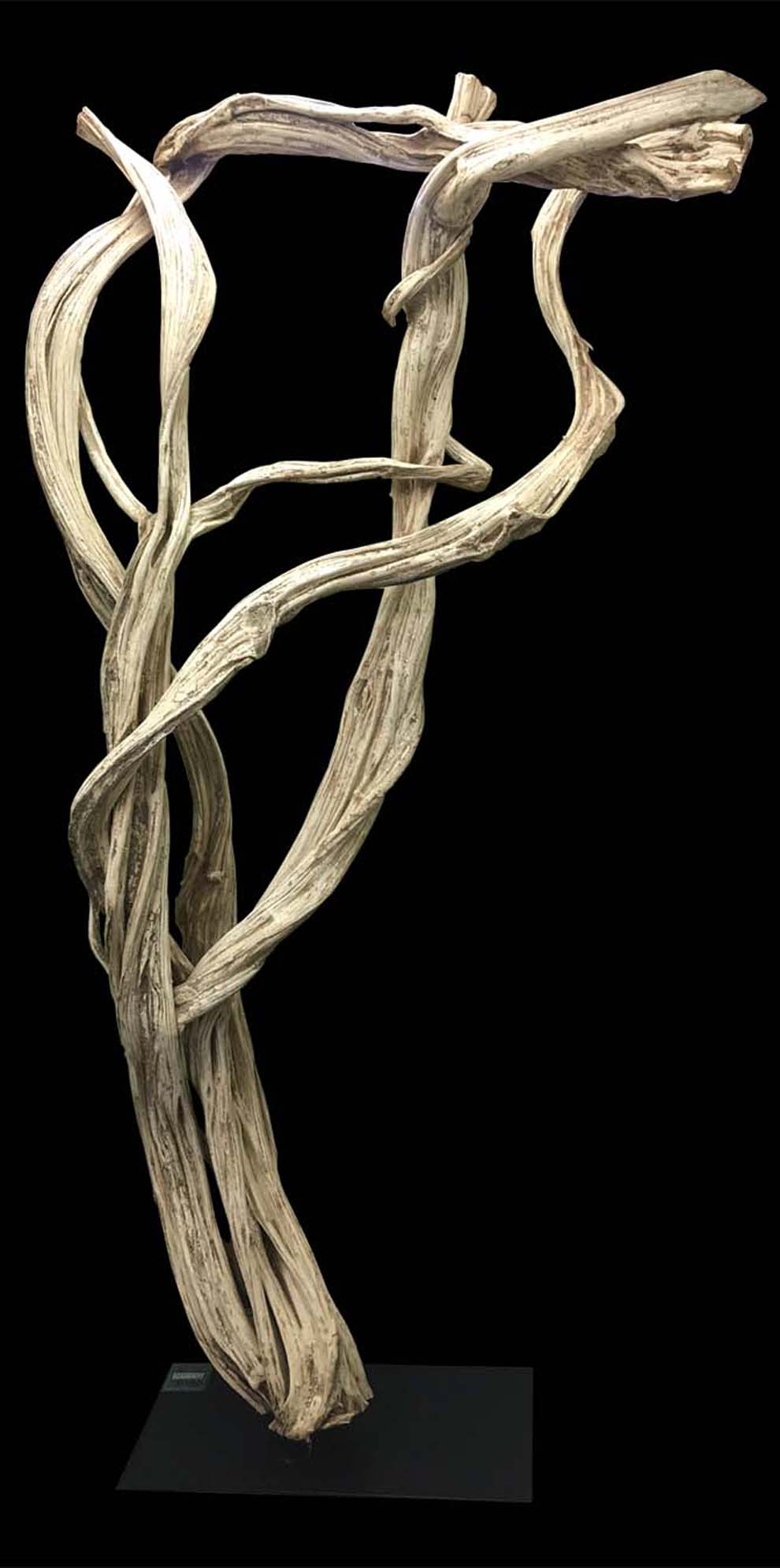 Natural Vine Sculpture